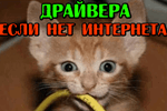 kto-to-peregryiz-provod-i-net-interneta-gde-teper-vzyat-drayver