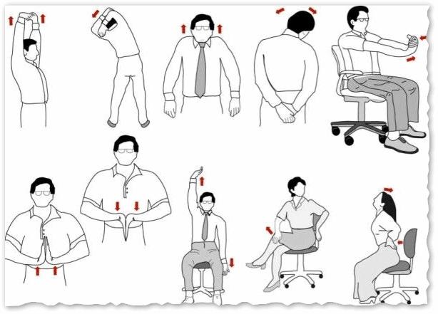 Рекомендуемые упражнения для спины, шеи, ног и кистей рук