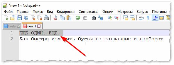 Notepad++ выделили нужный текст
