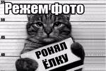 rezhem-foto