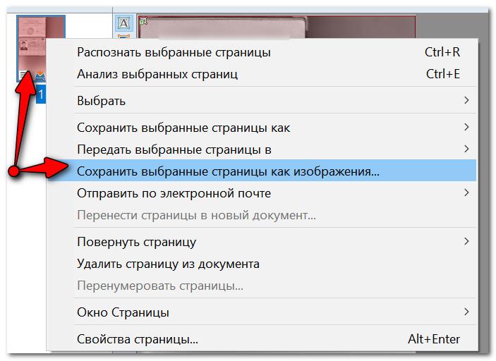 Сохранение выбранных страниц в картинки JPG/PDF/WORD и пр.