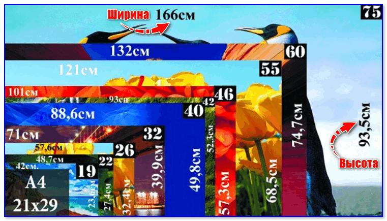 Схема для определения высоты и ширины экрана