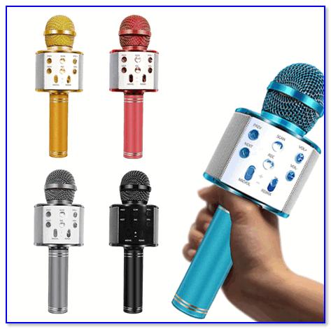 Внешний вид микрофона WS-858