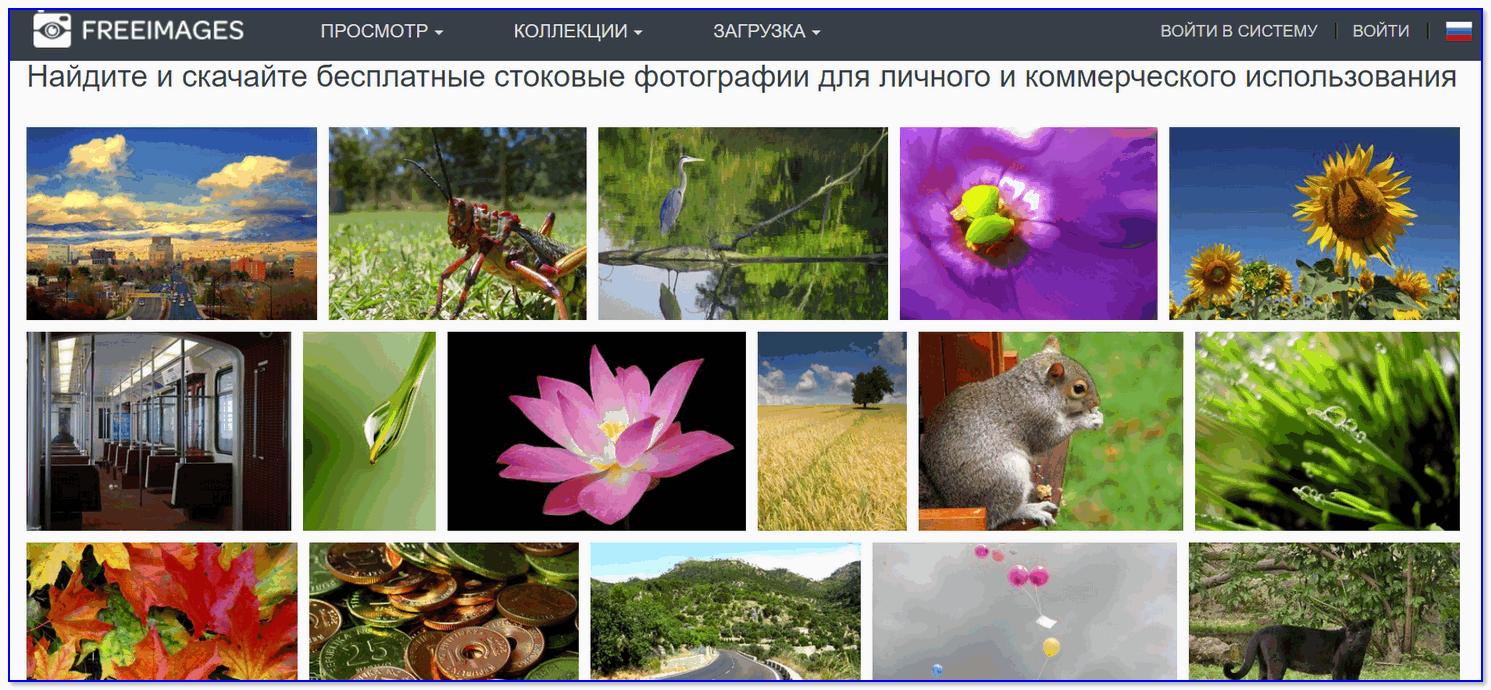 FreeImages.com — бесплатные изображения