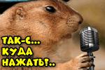kuda-nazhat-dlya-usileniya-zvuka