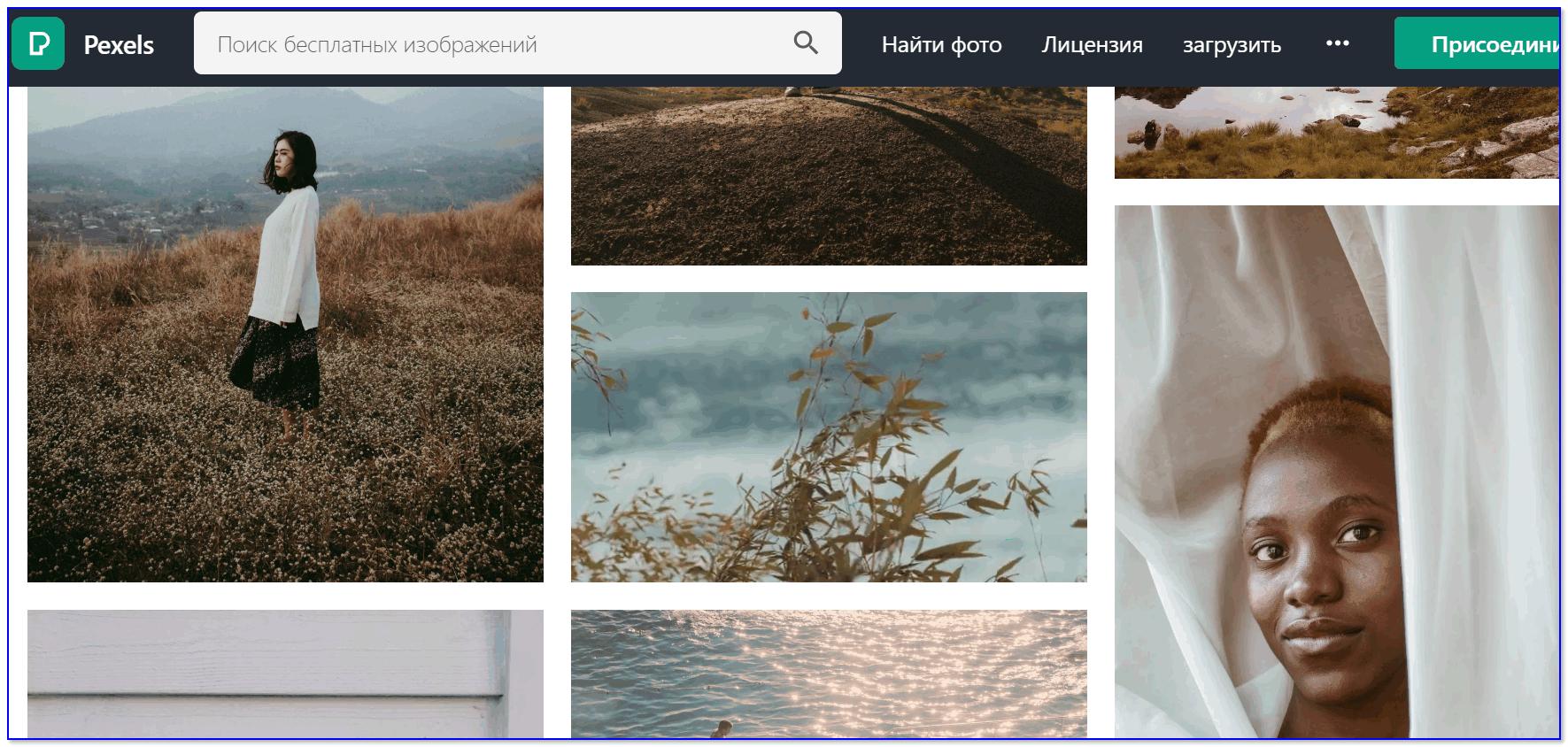 Скрин с сайта Pexels