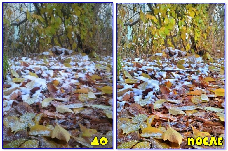 До и после - осенний листья