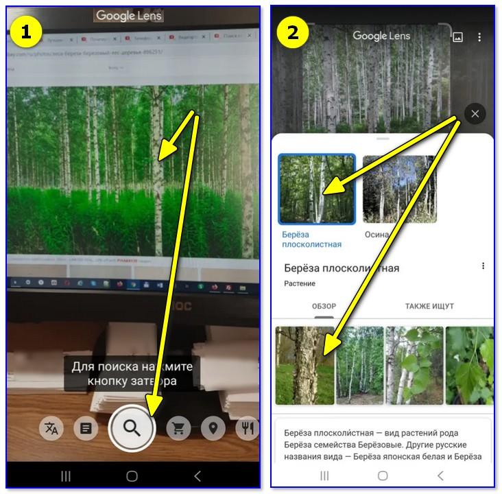 можете купить как по фотографии узнать что за предмет предположил, что исчезновении
