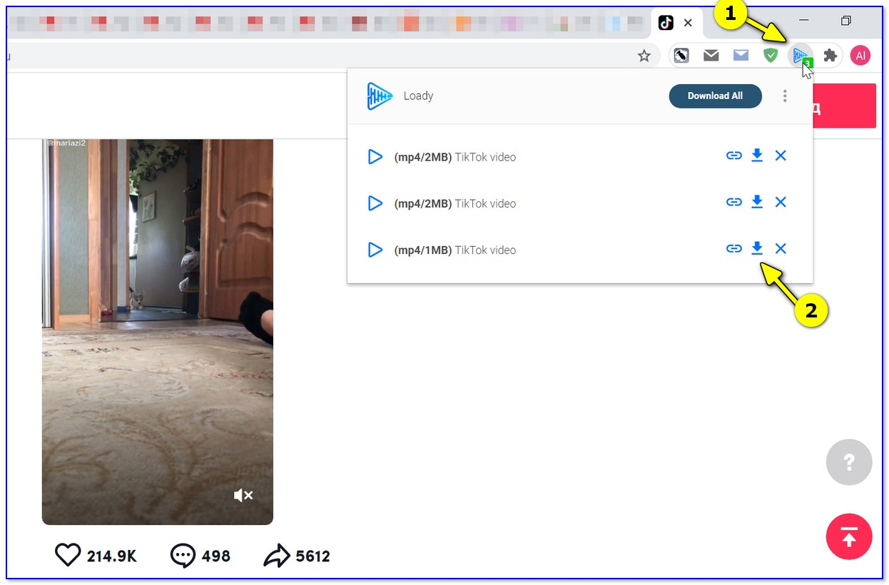 Chrome — плагин Video Downloader Ultimate