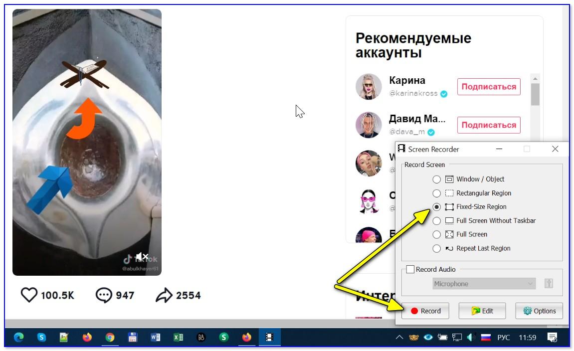 FastStone Capture — запись с экрана (выбор области)