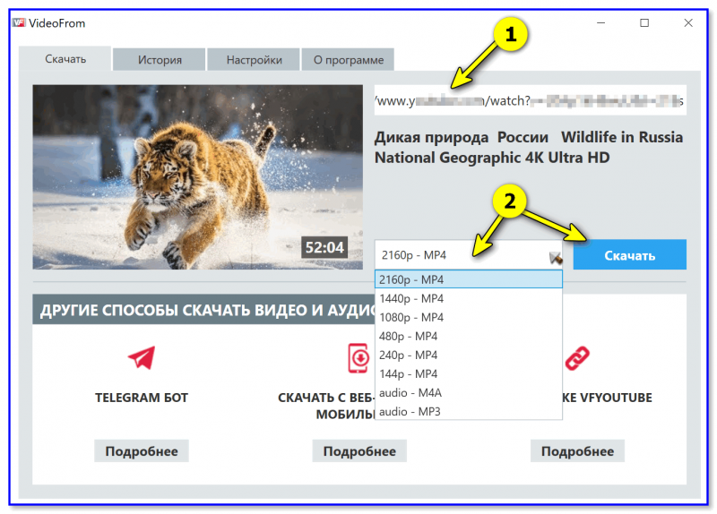 VideoFrom — скриншот окна программы