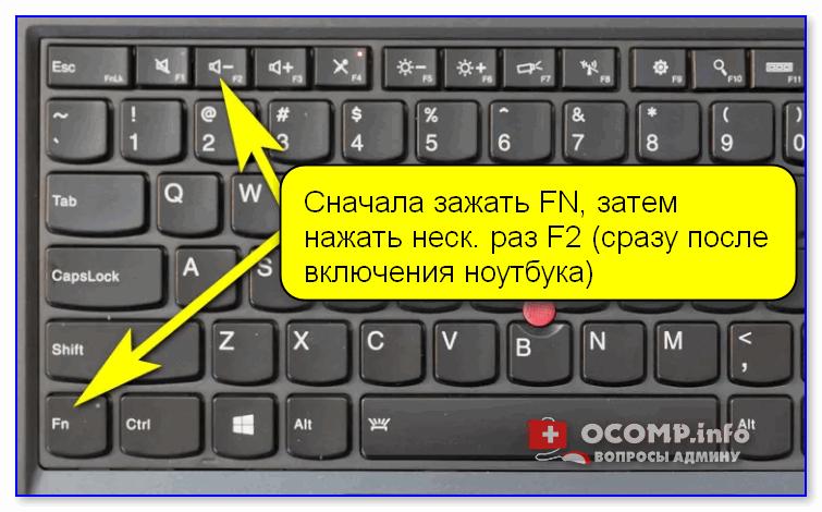 Сначала зажать FN, затем нажать неск. раз F2 (сразу после включения ноутбука)